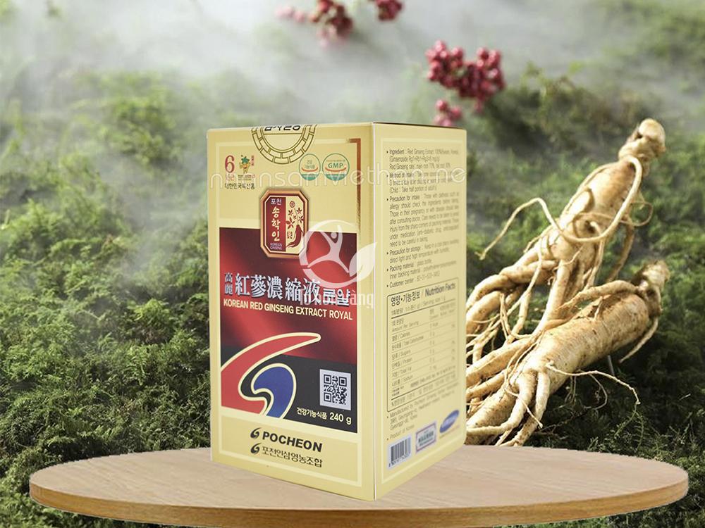 Cao hồng sâm 240 gram Pocheon