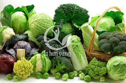 rau xanh chứa nhiều chất xơ là thành quan trọng giúp tăng cường quá trình trao đổi chất diễn ra thuận lợi hơn
