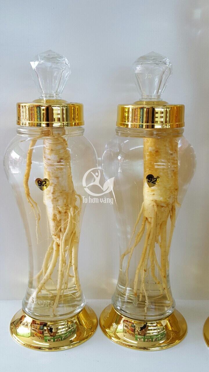 Rượu sâm tươi giúp tăng cường sức khỏe và sinh lí ở nam giới, giảm đau nhức xương khớp ở người già và kéo dài tuổi thanh xuân cho phụ nữ