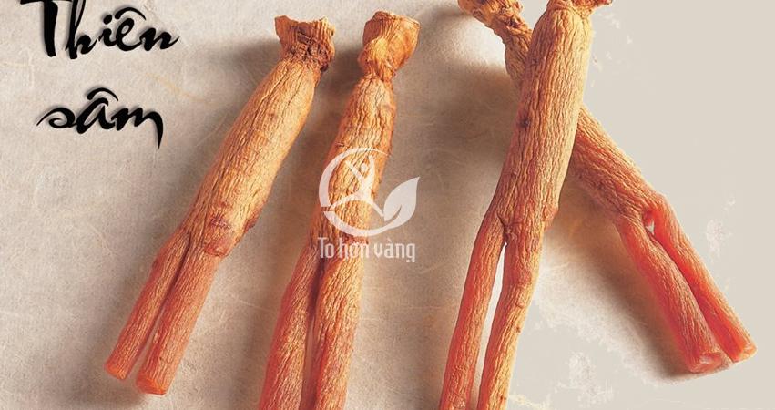Thiên sâm lđược chế biến từ củ sâm tươi có chất lượng tốt nhất và hình dáng đẹp nhất và hoàn hảo nhất